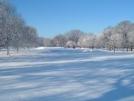 winter-06-019